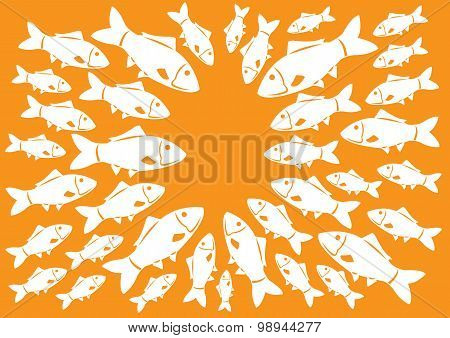 Fishes Meeting In Circle Vector Illustration