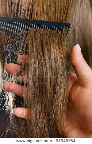 Hand Of Hairdresser Holding Strand Of Hair