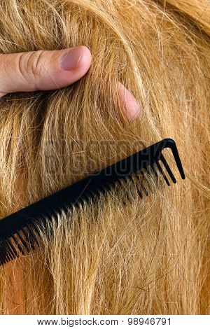 Hand Of The Hairdresser With The Hair And Comb
