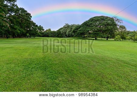 Golf Course Landscape With Tree And Rainbow.