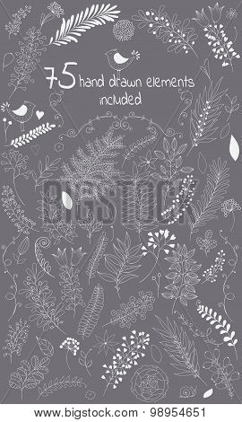 The vector design toolkit includes 75 individuals floral hand drawn elements.