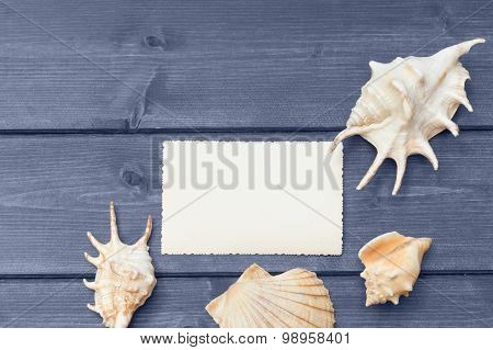 The Blank Old Photo And Seashells Lying On The Blue Wooden Desk