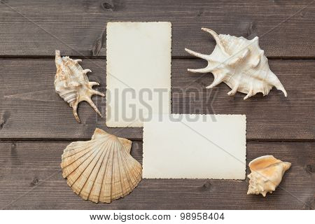 Two Blank Old Photos And Seashells Lying On The Wooden Desk