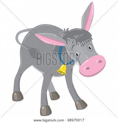 Funny gray donkey