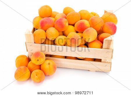Peaches (prunus Persica) In Wooden Crate