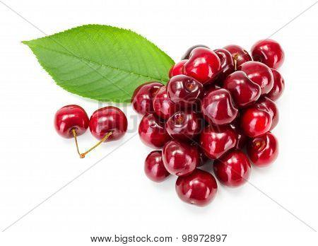 Bunch Of Sweet Cherry Berries (prunus Avium)