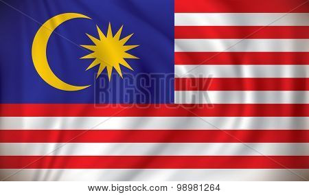 Flag of Malaysia - vector illustration