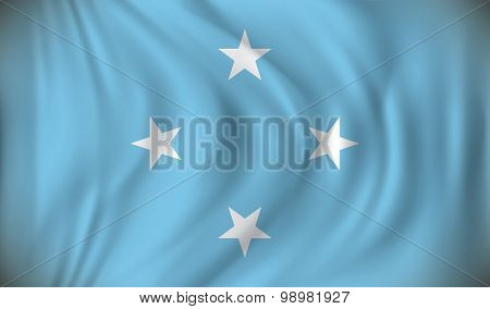 Flag of Micronesia - vector illustration