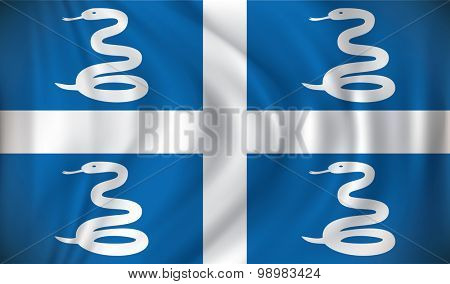 Flag of Martinique - vector illustration