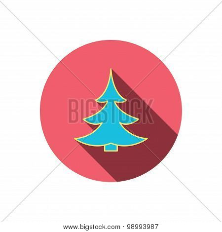 Christmas fir tree icon. Spruce sign.
