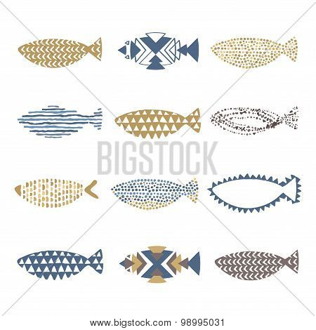 Collection Of 12 Fishes Vector
