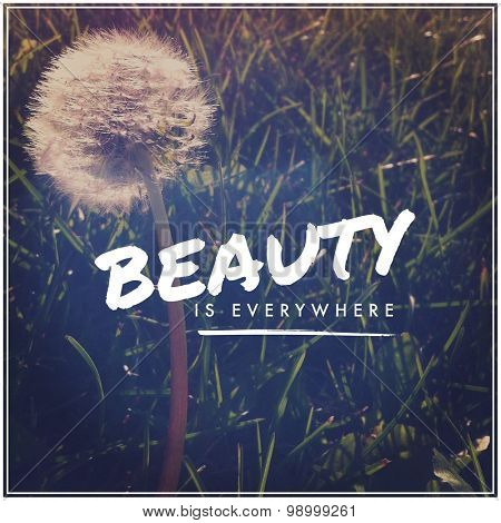 Inspirational Typographic Quote - Beauty is everywhere