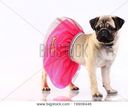 Lady Mop In Pink Skirt