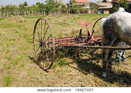 Old machine for collecting hay