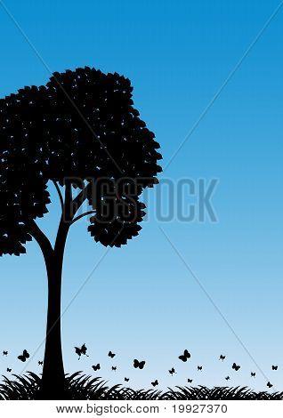 Landscape 013