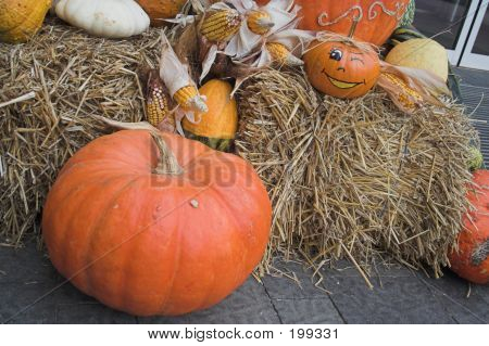 Thanksgiving-halloween Decoration#4