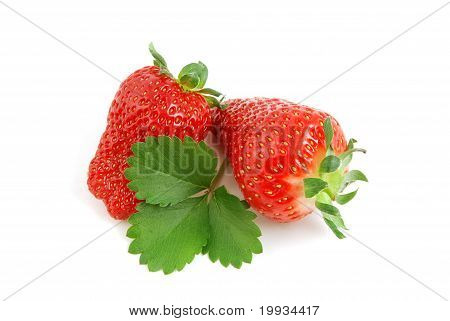 Strawberries with green leaf