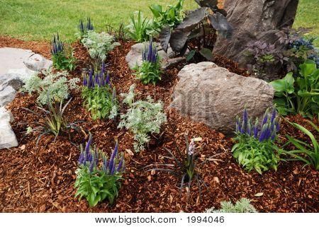 Garten-Bett