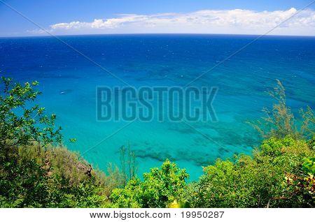 Ozean trifft die Tropen