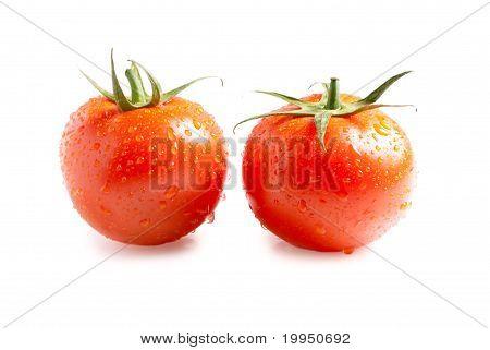 zwei frische Tomaten