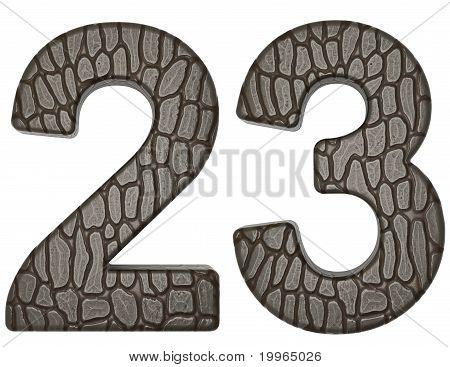 Alligator Skin Font 2 3 Digits Isolated