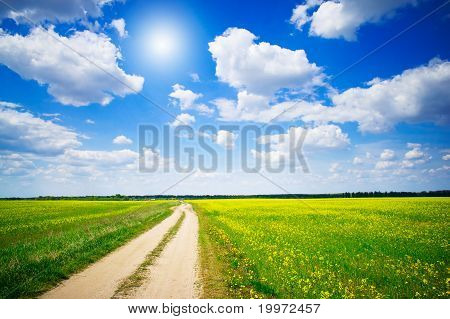 Amazing Yellow Field Of Rapeseeds And The Blue Sky With Clouds.
