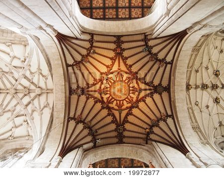 ceiling of winchester cathedral