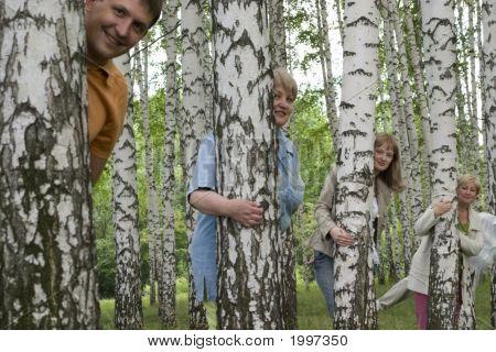 Personas en el bosque de abedul