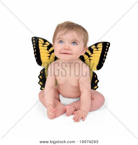 Little Cute Baby Butterfly on White Background