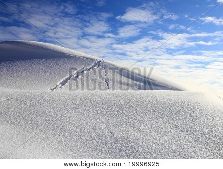 Snow Desert And The Sky
