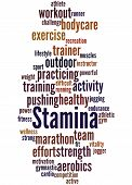 Stamina Is Staying Power Or Enduring Strength, Word Cloud 6 poster