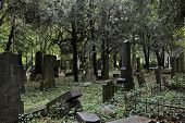 image of burial-vault  - Lost jewish section of the central cemetery in Vienna Austria - JPG