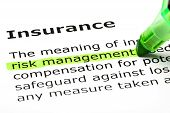 'Risk Management' Highlighted, Under 'insurance'