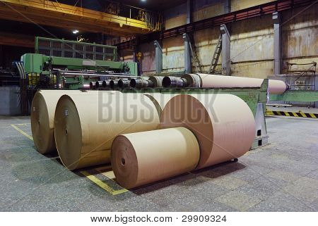 Rolls Of Kraft Paper
