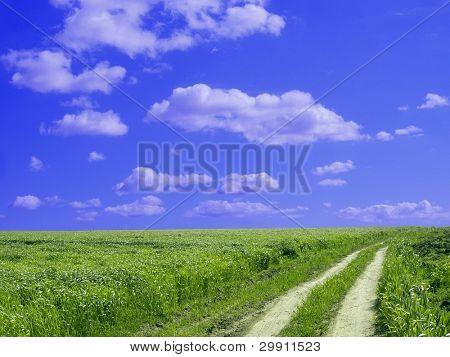 Bright future lying ahead, (green field)