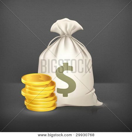 Moneybag and coin, vector icon