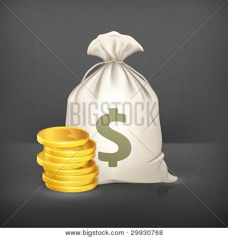 Moneybag and coin, vector icon