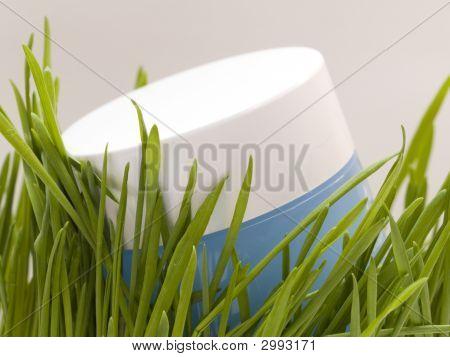 Grass And Cream