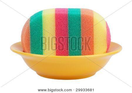 Striped Sponge In A Dish