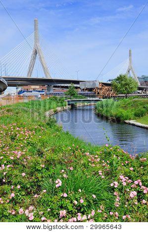 Boston Leonard P. Zakim Bunker Hill Memorial Bridge with blue sky in park with flower as the famous land mark.