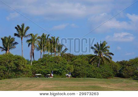 Course On Kauai