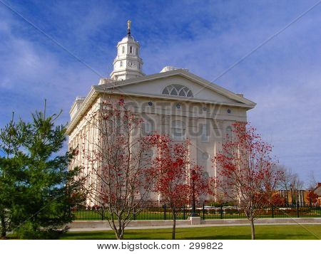 Nauvoo Temple (rear)