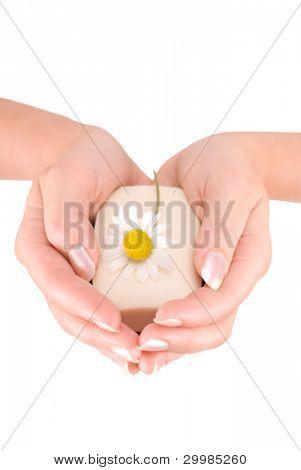 Manos de mujer sosteniendo una barra de jabón aislado sobre fondo blanco
