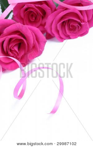 Roses with a ribbon on a white background close up