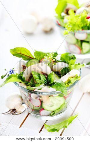 Fresh salad with radishes, mushrooms and cucumbers