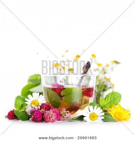 taza de té de hierbas y flores frescas sobre fondo blanco aislado