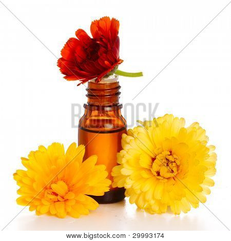 aromatherapy essential oil with marigold flowers, isolated white background. Studio shot