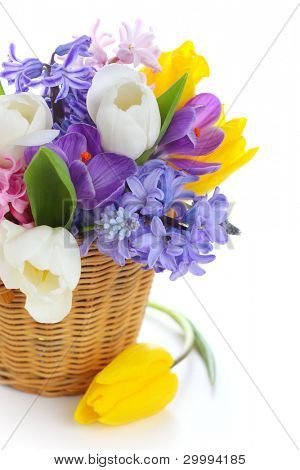 Frühling Blumen in Basket isolated on white background
