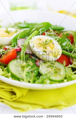 Summer salad of tomatoes, cucumbers, asparagus, young green peas dressed with olive oil and watercress salad