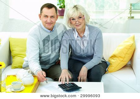 Portrait of mature man and his wife making financial revision at home